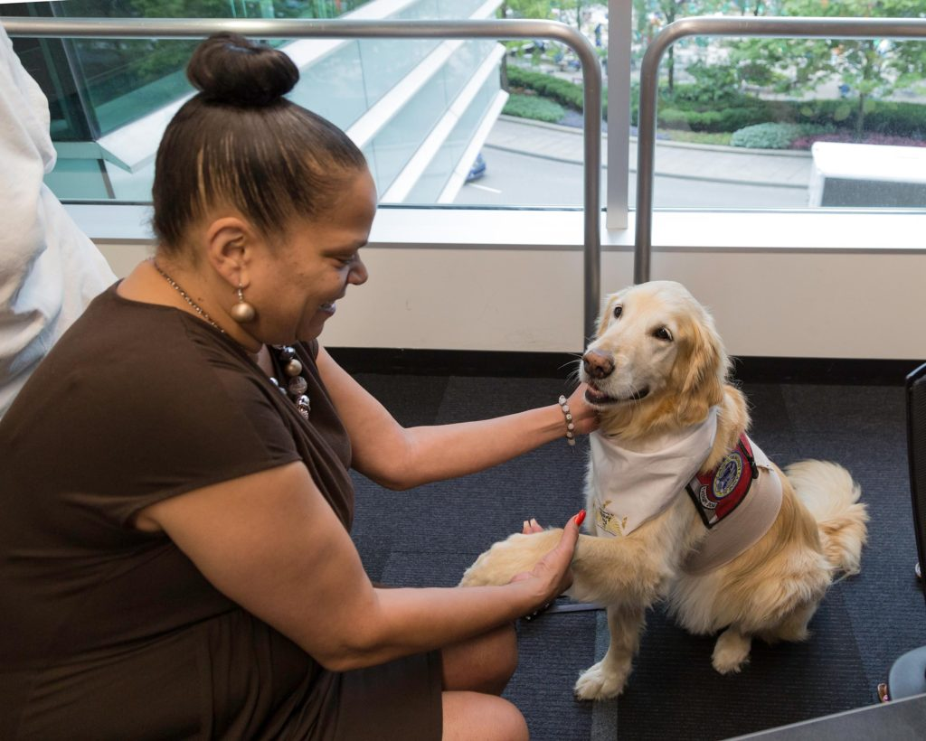 Here Stephanie Williams greets Odie, a golden retriever, as trainers from Fur Angels headline a lunch & learn program at Walbridge in Detroit. The organization brings trained canines to nursing homes and hospitals to interact with the elderly and infirmed.