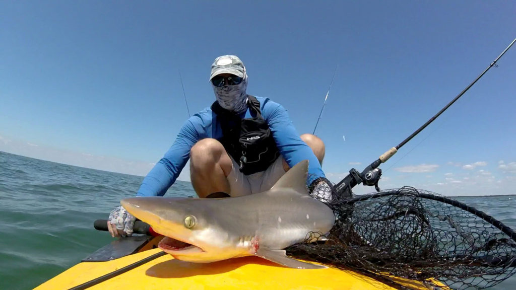 John Sullivan Catches Shark